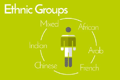 Bevölkerungsgruppen der Seychellen nach ethnischer Herkunft