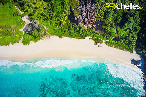 aerial view grand anse la digue