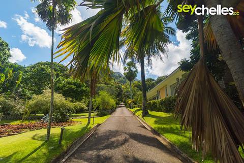 botanischer garten - sehenswürdigkeit auf der hauptinsel der seychellen, mahe