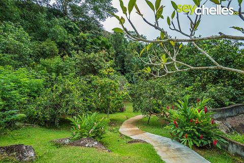 Der Weg durch den Jardin Du Roi