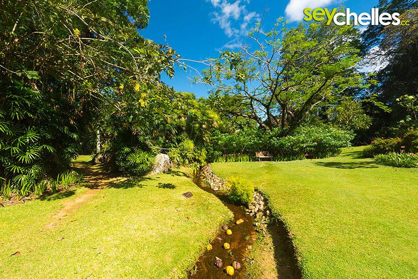 small stream in victorias botanical garden