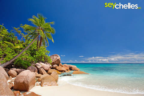 kleiner strand nördlich der anse lazio