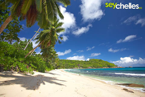 take precautions for your seychelles trip