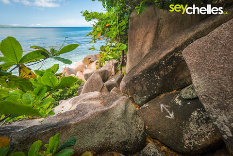 the rocky path to anse caiman