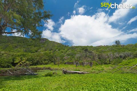 ancient ruins behind anse cocos