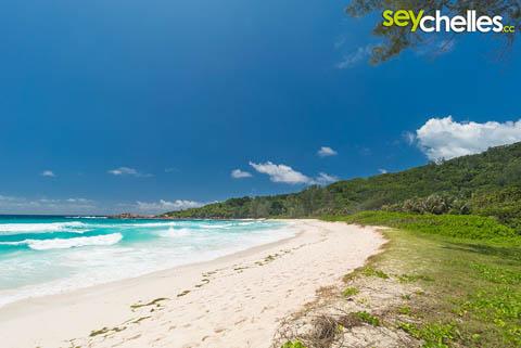 moon shaped beach of anse cocos seychelles