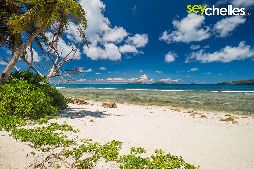 wave breakers on anse gaulettes on la digue, seychelles