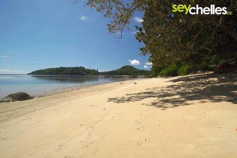 anse boileau beach on mahe
