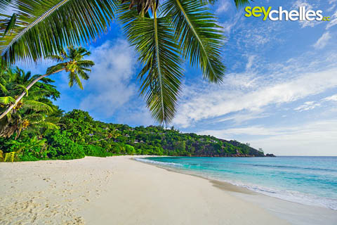 petite anse dream beach on mahe