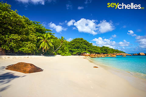 Anse Lazio on Praslin is the Nr. 4 in our Top5 beaches of Seychelles list
